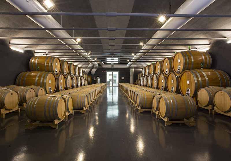 Schenk Wine nos valeurs Azienda Lunadoro